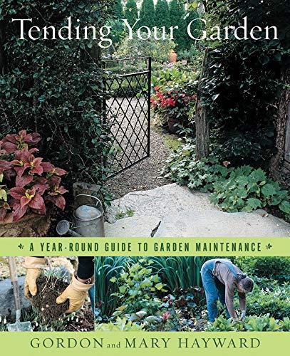 Tending Your Garden: A Year-Round Guide to Garden Maintenance