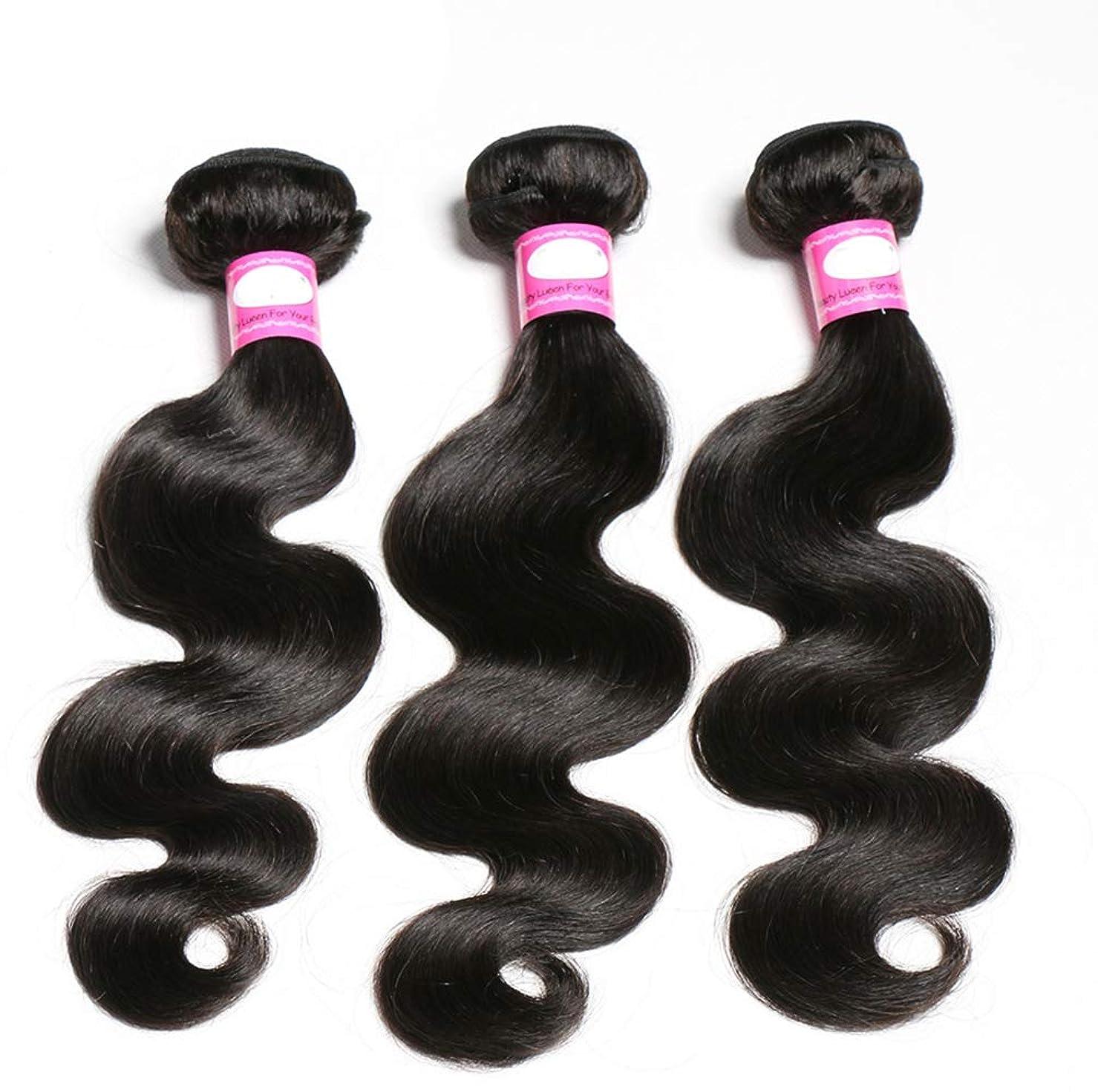 方程式大通り解読するブラジルの巻き毛の束深い波の束100%ブラジルのレミーの巻き毛の人間の毛髪の織り方ブラジルの毛の束(3束)