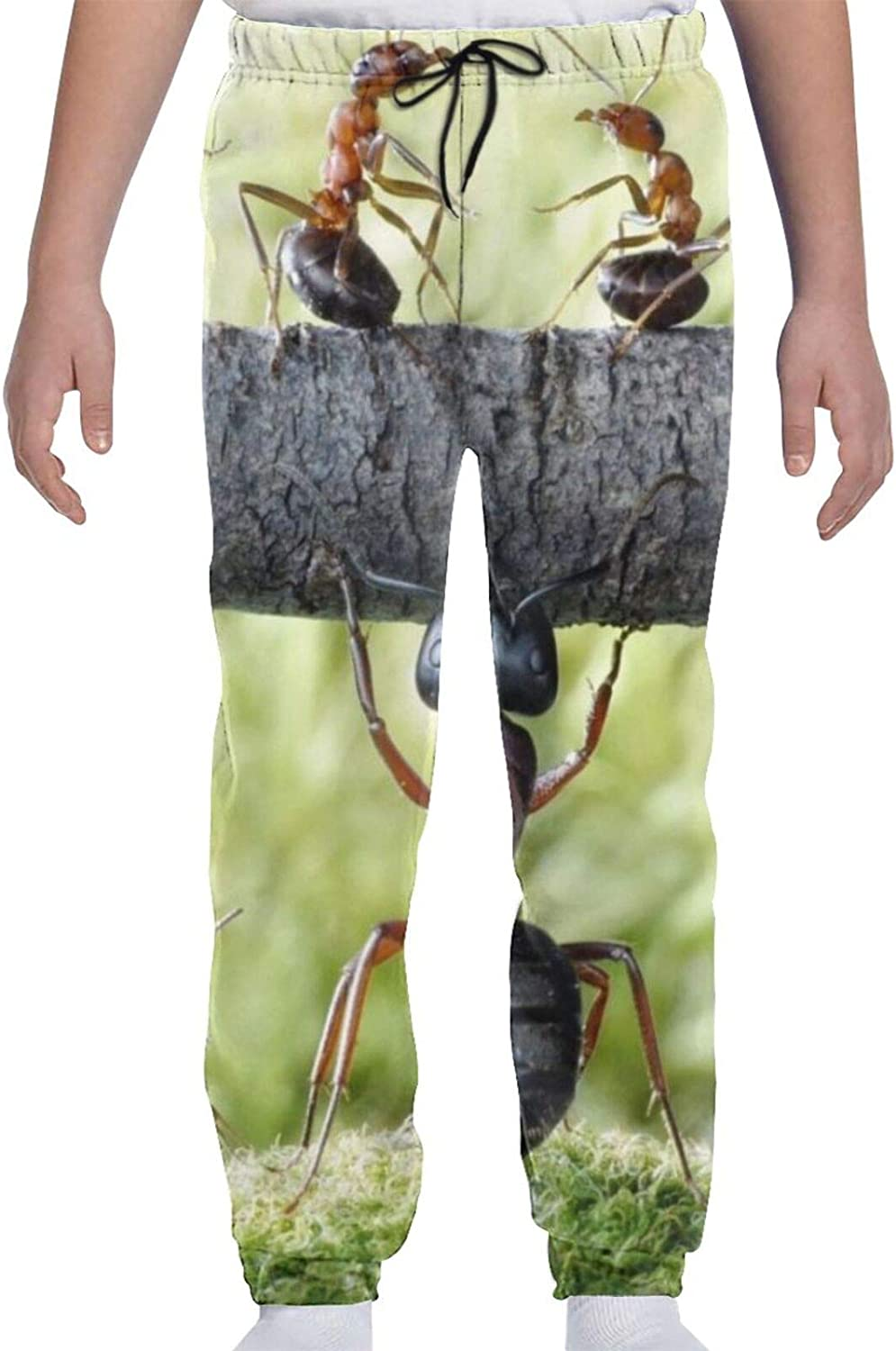 Red Ant Youth Sweatpants 3D Max 85% OFF Print Teens Boys Long Beach Mall Cas Trousers Girls