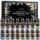 Lagunamoon Fragrance Oils Gift Set, Top 16 Premium Grade Fragrance Oils for Candle Making, Soap Making, Diffuser, Perfume, Bath - 10ml/Bottle