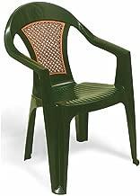 Cadeira Plástica Monobloco Com Bracos Malibu Verde Com Tela Radica Tramontina 92230/280