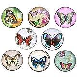 Morella donna Click-button Set farfalla–Diversità 8Click Buttons leichte Tonalità di colore
