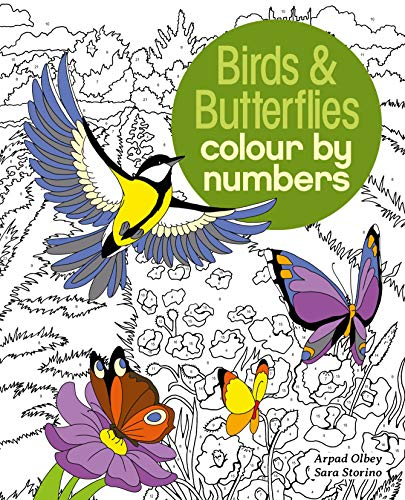 Olbey, A: Birds & Butterflies Colour by Numbers (Arcturus Colour by Numbers Collection)