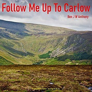 Follow Me Up to Carlow