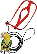 NaiCasy 6 m Color al Azar Correa P/ájaro del Loro Establece el Anti-mordedura Flying Cuerda Capacitaci/ón para Loros Aves y jard/ín