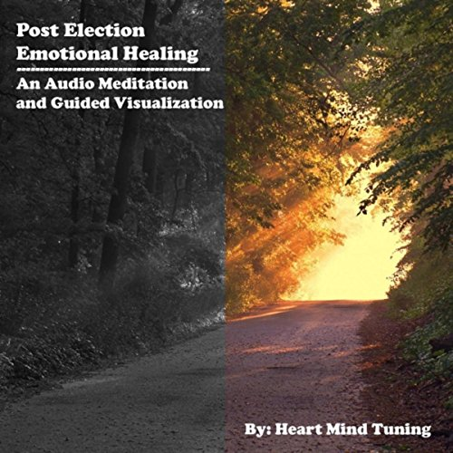 Post Election Emotional Healing