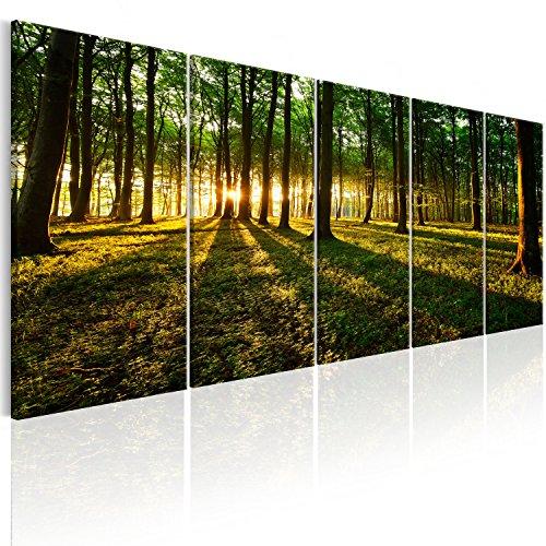 murando Cuadro Acústico Bosque 150x60 cm XXL Impresión 5 Piezas Artística Lienzo de Tejido no Tejido Decoración de Pared Aislamiento Absorción de Sonidos Naturaleza Paisaje c-B-0306-b-m