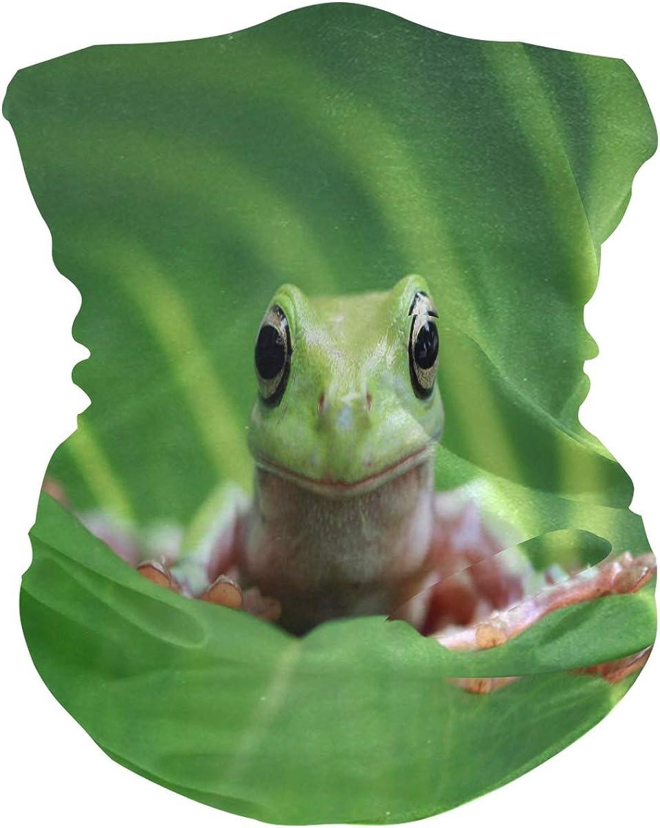 ALAZA Funny Frog Green Headwear Magic Scarf Headband Bandana Outdoor Sports for Women Men