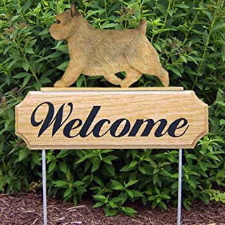 Michael Park GRIZZLE Norwich Terrier Dog In Gait Welcome Stake by