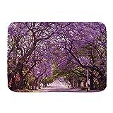 Alfombra de baño,primavera,violeta,flor,al lado de la carretera,púrpura,flor,pétalo,otoño,en,carrete...