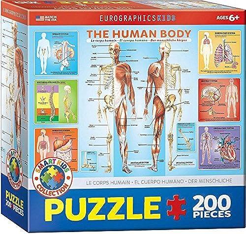 EuroGraphics Human Body Jigsaw Puzzle (200-Piece) by EuroGraphics