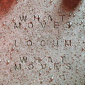 What Moves (Locum Edit)
