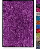 buySMILE SCHMUTZFANGMATTE (Purple, 40 x 60 cm) waschbare FUßMATTE Colibri wash&clean, feuerfeste Premium-SAUBERLAUFMATTE