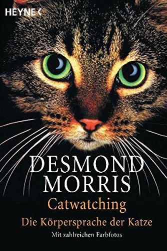 Catwatching: Die Körpersprache der Katzen