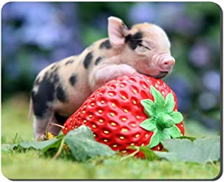 Animals Little Pig Big Strawberry Animal Picture Game Office Mouse Pad (8.2x10.2inches)