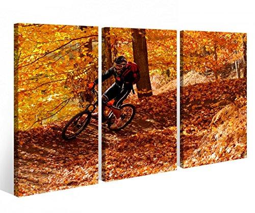 Preisvergleich Produktbild Leinwandbild 3 Tlg. Fahrrad Mountainbike Sport Herbst Leinwand Bild Bilder Holz fertig gerahmt 9P822,  3 tlg BxH:120x80cm (3Stk 40x 80cm)