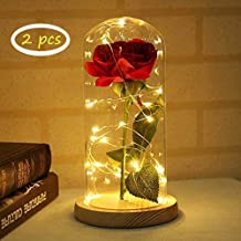 Newlife Simulation Artificial Red Silk Rose with LED Light in Glass Lampshade (White)
