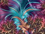 Bgraamiens Puzzle-Feather Fractal Artistic Design-1000 Pieces Creative Art Puzzle Color Challenge Jigsaw Puzzle for Adults and Kids