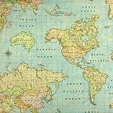 Dekostoff Weltkarte hellblau Canvasstoff - Preis gilt für