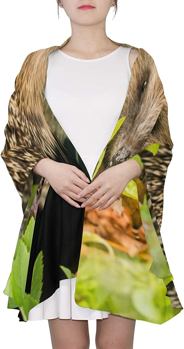African Hedgehogs Outdoors Unique Fashion Scarf For Women Lightweight Fashion Fall Winter Print Scarves Shawl Wraps Gifts For Early Spring