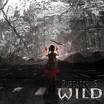 Purgatorius
