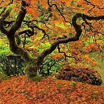 Garden of Leaves