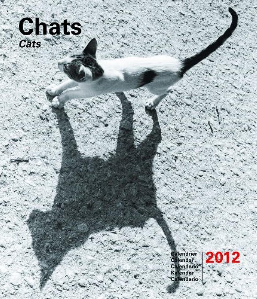 文明化泥だらけすり減る2012 15 x 18 chats
