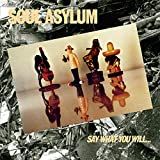 Songtexte von Soul Asylum - Say What You Will... Everything Can Happen