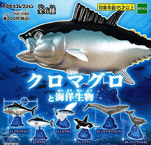クロマグロと海洋生物 [全6種セット(フルコンプ)]