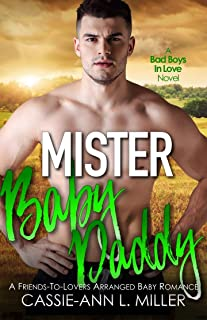 Mister Baby Daddy (Bad Boys in Love Book 3)