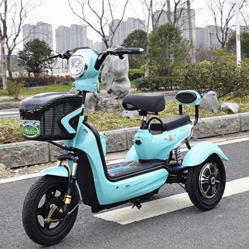 Green Energy Elektro 3-Rad-Scooter Elektro-Dreirad, Single Double Outdoor Leisure 3-Rad-Fahrrad, Geeignet für Erwachsene Senioren, 20A Lithium-Batterie
