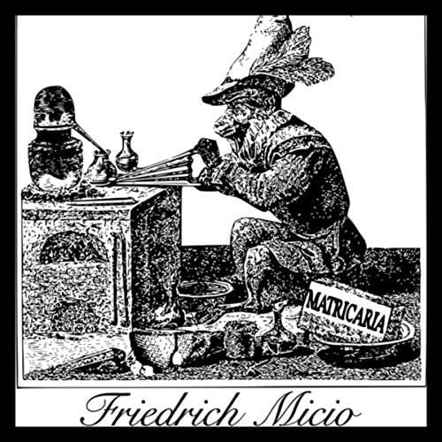 Friedrich Micio
