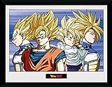 Póster Enmarcado con los Personajes de Dragon Ball Z (30x 40cm), de GB Eye