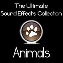 Ultimate Sound Effects Collection - Animals