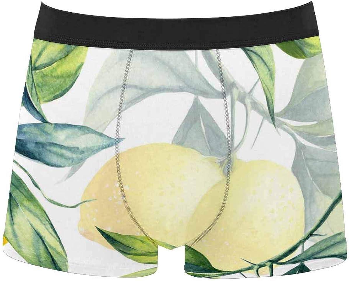 InterestPrint Men's Underwear Boxer Briefs Underwear for Juniors Yoth Boys Purple Lavender Flowers Pattern