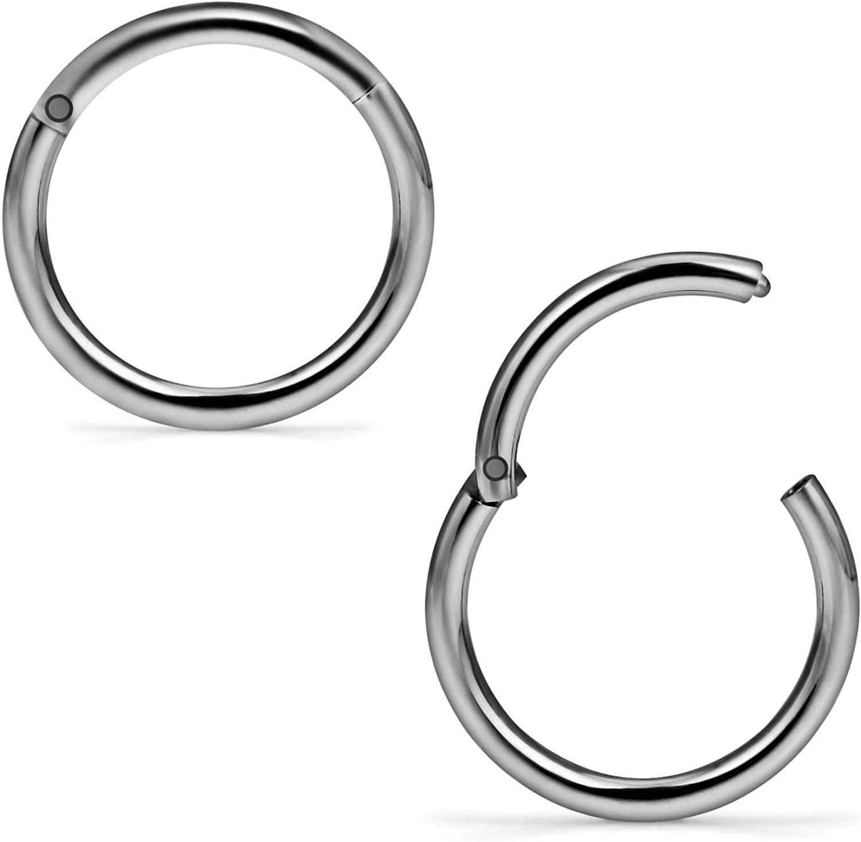 Titanium Seamless Segment Clicker Septum Lip Ear Nose Ring Piercing Hoop RZC