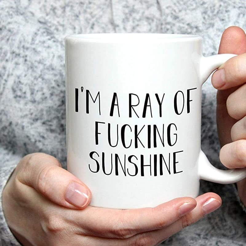 Whitexzzx Ray Of Fucking Sunshine Mug Funny Inappropriate Gift For Her