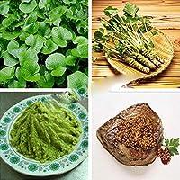 Free Venus Semillas de vegetales verdes para semillas de mostaza saludables Semillas