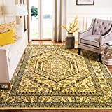 Safavieh Adirondack Collection ADR108H Oriental Medallion Non-Shedding Stain Resistant Living Room Bedroom Area Rug, 4' x 4' Square, Gold / Black
