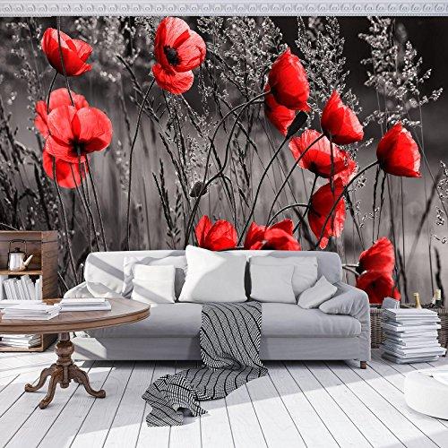 DekoShop Fototapete Vlies Tapete Moderne Wanddeko Wandtapete Mohnblumen AMD11763V8 V8 (368cm. x 254cm.) Natur, Wald, Blumen
