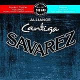 SAVAREZ サバレス クラシックギター弦 510-ARJ