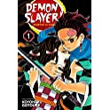 Demon Slayer: Kimetsu no Yaiba, Vol. 1: Cruelty Kindle eBook