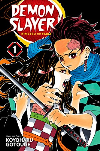 Demon Slayer: Kimetsu no Yaiba, Vol. 1: Cruelty (English Edition)