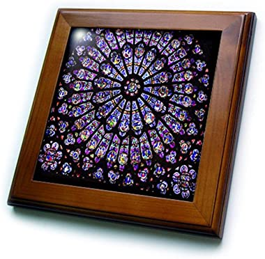 3dRose ft_50227_1 Notre Dame Cathedral Stained Glass Framed Tile, 8 by 8-Inch