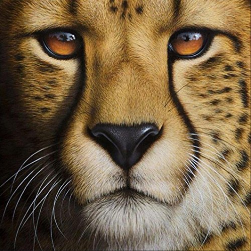 Clearance! DIY 5D Animal Diamond Painting by Number Kits, Jiayit 5D Diamond Rhinestone Painting Pasted Embroidery Painting Cross Stitch Home Decor (A)