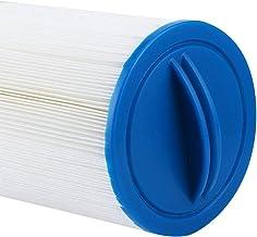 Changor Filtro de Piscina Limpia, 37.5 x 13 x 13 cm Accesorio de reemplazo de Filtro de Filtro de Filtro de plástico para FD2007
