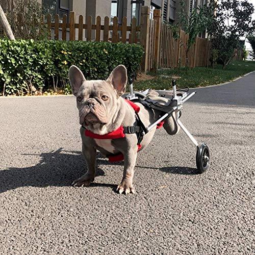 YUEXING Cart Rollstuhl für Hunde Katzen Hasen, Hinterbein/Rückenfüße, Rollator für Hunde und Katzen, Rollstuhl, Haustier von 2 ~ 20 kg