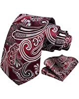 HISDERN Paisley Tie for Men Handkerchief Woven Classic Floral Men's Necktie & Pocket Square Set Burgundy