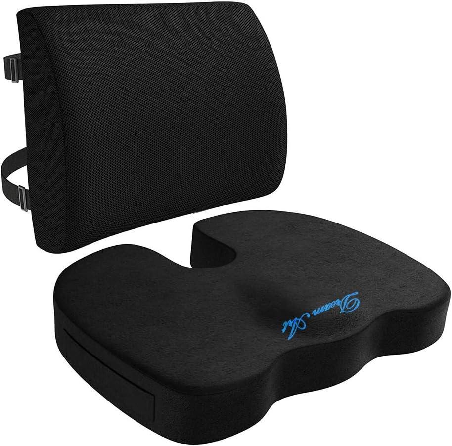 DREAM ART Memory Foam Seat Max Indianapolis Mall 42% OFF Lumbar Cushion Support Back