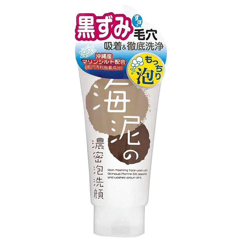 スリッパ伝染性のデイジーリアルトライ 海泥の濃密泡洗顔120g